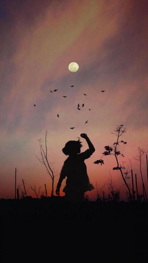 月光下一个人伤感背影锁屏图片高清手机壁纸另类