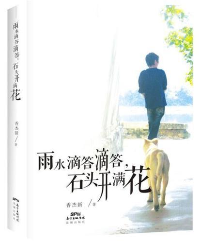 石头开满花 9787536079748 香杰新 花城出版社 小说 书籍