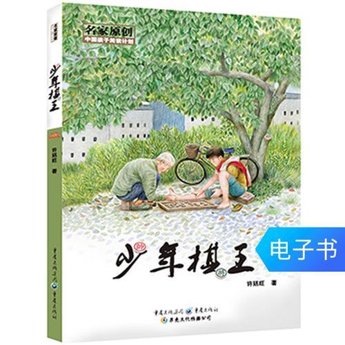 【电子书】《少年棋王》中国孩子阅读计划名家原创