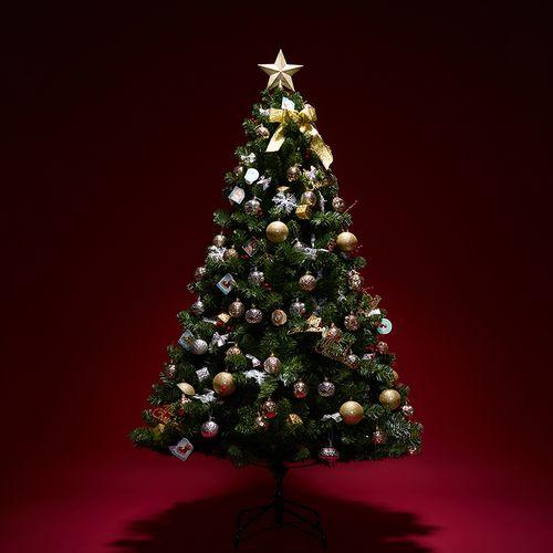 2加密/套餐圣诞树